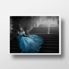 BLACK WHITE CINDERELLA PRINCESS OIL PAINTING EFFECT PRINT PICTURE POSTER  ART