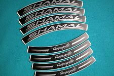 CAMPAGNOLO SHAMAL TRACK FOR BLACK RIMS  REPLACEMENT RIM DECAL SET  FOR 2 RIMS