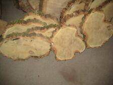 Baumscheibe aus Robinie 40cm * 5cm, 5,99 / Stück