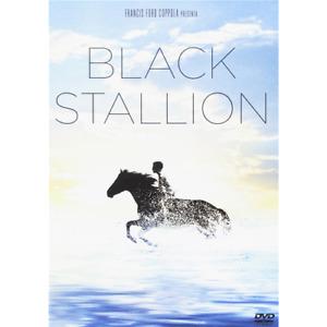 Black Stallion  [Dvd Nuovo]