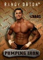 2004 Fleer WWE Chaos Gold #91 Randy Orton PI Wrestling