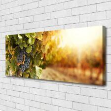 Leinwand-Bilder Wandbild Canvas Kunstdruck 125x50 Weintrauben Natur