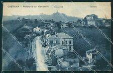 Pavia Castana cartolina QT0406