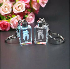 One Pair Transparent Tooth Shaped Key Chain Dental Clinic Office Good Gift New