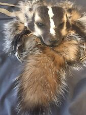 Badger bag with taxidermy head native american made for pipe flutes possibles