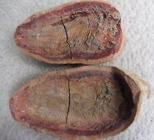 Fossil Fish Perleidus (10.8 cm) Positive + Negative - Madagascar - Triassic