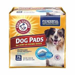 "75 Absorb 22.5""X22.5"" Pets Training Pads XL Pet Puppy Dog Pad Potty No Leak Pee"