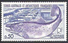 Fsat/TAAF 1977 Salmón/pescado/vida salvaje 1v (n22578)