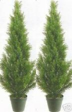 "2 Artificial 3' Cedar Topiary Tree Outdoor UV Plant 36"" Cypress Pine 7 5 4 6 Pot"