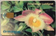Malaysia Used Phone Cards - Dendrobium Loddigesii