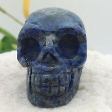 "1.5""Natural Lapis Lazuli Carved Crystal Skull Realistic Skeleton Healing #sk7541"