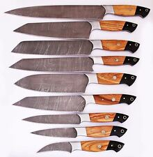 Eye Catching Custom Handmade Damascus Steel 9Pcs. Kitchen Knives Set -040