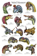 Weird Dinosaurs Laminated Educational Science Classroom Chart Poster 24x36