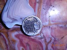 19xx Hobo Nickel Buffalo Indian Head Beanie Long Hair