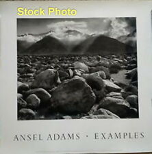 "Vintage ANSEL ADAMS MT WILLIAMSON SIERRA NEVADA Art Print ~ 25.5"" x 28 3/4"""