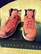 Nike lebron 12 heart of a lion athletic 7y