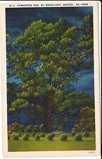 1940's The Pemberton Oak, by Moonlight in Bristol, VA Virginia TN Tennessee PC