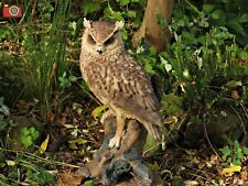 More details for long eared owl, life size. lovely home or garden ornament. vivid arts.