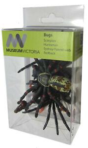 Bugs Replica 4pc Arachnids Spider redback huntsman Model Animals of Australia