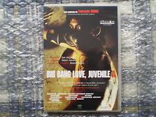 BIG BANG LOVE JUVENILE A DVD DESCATALOGADO TAKASHI MIIKE 46 OKUNEN NO KOI