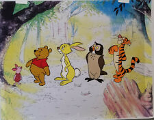 Disney Winnie the Pooh,Piglet,Rabbit,Owl,Tigger Original Model Cel