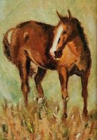 "M.JANE DOYLE SIGNED ORIGINAL ART OIL/CANVAS PAINTING ""BRIGHT PENNY"" (HORSE) FR."