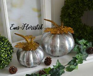 🌷2-Set Herbst Deko Metall Kürbis silber mit Rostblätter
