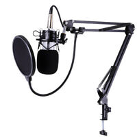 Professional Recording Studio Condenser Microphone Arm Stand Pop Filter