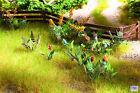 N14056 Noch HO/OO Scale Laser Cut Minis+ Field Plants & Wild Flowers