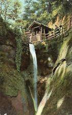 Shanklin Chine - ISLE OF WIGHT - Original Unused Vintage Postcard (EPH)