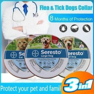 Dog Cat Flea And Tick Repellent 8 Month Anti Insect Collar Protection For Pet