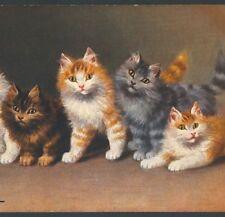 Near Mint.! Sperlich,Pretty Variety Tiger Cat Kittens,Chromolithograph, Postcard