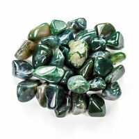 Bulk Wholesale Lot 1 LB - Moss Agate - One Pound Tumbled Polished Stones