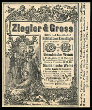 Alte Reklame Werbung 1887 Ziegler & Gross Weinhandel Konstanz Kreuzlingen