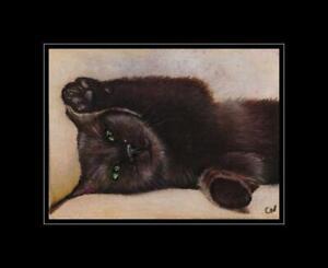 "original aceo ""black kitten  "" miniature  cat painting nadia"