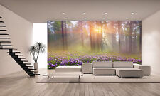 Magic Carpathian Forest Wall Mural Photo Wallpaper GIANT DECOR Paper Poster