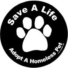 Adopt A Homeless Pet Circle Magnet