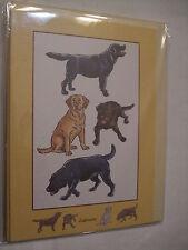 CARTE + ENVELOPPE - chien   LABRADOR