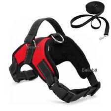 Pet Control Harness Dog Cat Soft Mesh Walk Collar Safety Strap Vest XL Red