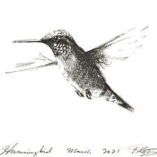 Hummingbird bird illustration Original Art ink drawing artwork listed by artist