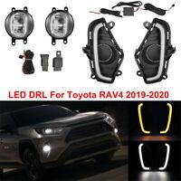 For Toyota RAV4 2019-2020 LED DRL Day Lamps & Halogen Fog Lights w/ Harness Set
