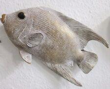 Wandhänger Wanddeko Wandobjekt Fisch beige gold Fiberglas maritim Wandschmuck