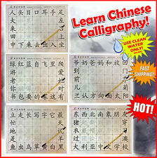 LEARN Chinese Calligraphy Reusable Writing Magic Cloth Set Brush included NEW