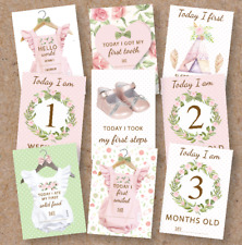 Baby Girl Milestone Cards • Baby Shower Gift • New Baby Gift • Vintage • Floral