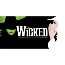 wicked the musical elphaba and glinda wizard of oz license plate usa made