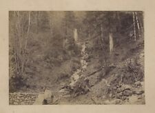 Cascada el monje Chambon en lago Foto E. Richard Vintage Albúmina 1881