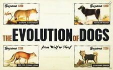 Évolution des chiens timbre feuille (Coyote / Red Fox / Alaska Husky / Yorkshire Terrier)