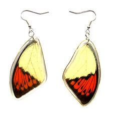 Real Genuine Great Orange Tip Butterfly Wing S Hook Drop Dangle Earrings