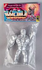 Wrestlers of the Universe Chrome BOOTLEG goodlegtoys CUSTOM TOY WWF WWE KO MOTU