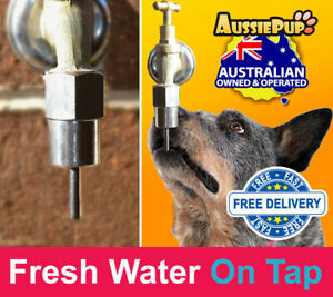 Pet Dog Water Fountains Drinking Trough Hydrator Tap Connection Breeders